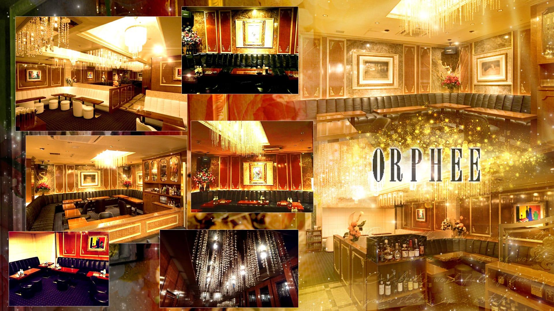 GINZA CLUB ORPHEE[ギンザクラブオルフェ] 銀座 キャバクラ TOP画像