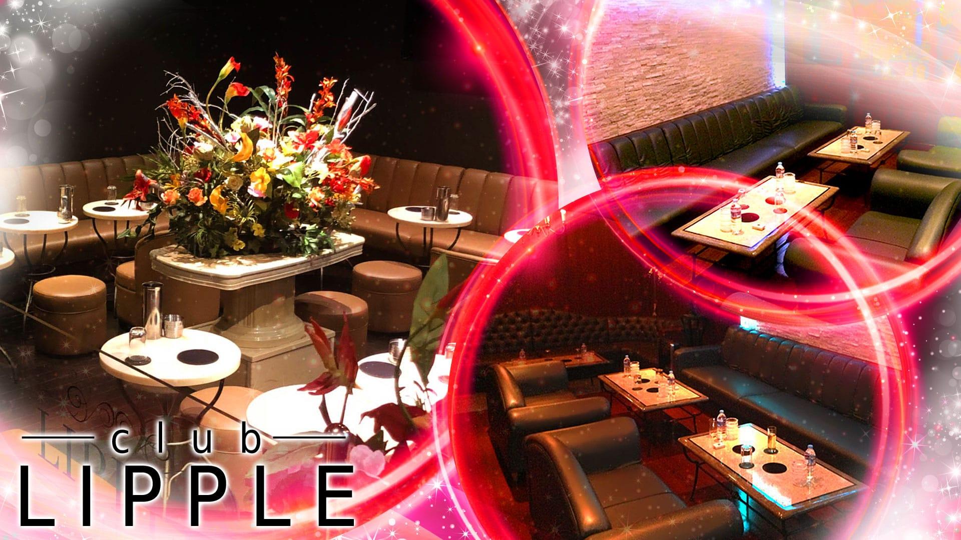 LIPPLE[リップル] 上野 キャバクラ TOP画像