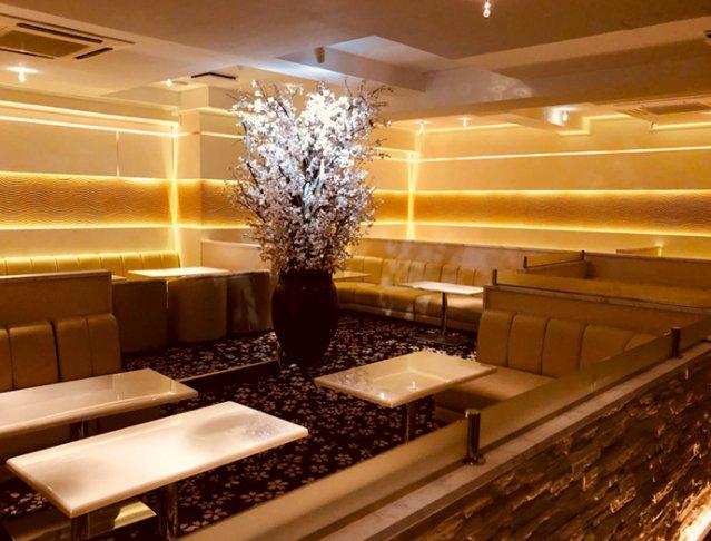 Club櫻[クラブ サクラ](八王子キャバクラ)のバイト求人・体験入店情報Photo2