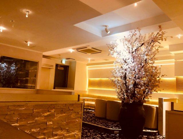 Club櫻[クラブ サクラ](八王子キャバクラ)のバイト求人・体験入店情報Photo4