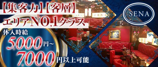 SENA[セナ](銀座キャバクラ)のバイト求人・体験入店情報