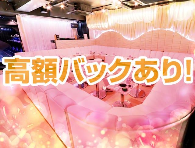 miu-miu[ミュウミュウ](池袋キャバクラ)のバイト求人・体験入店情報Photo2