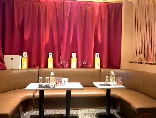 club ハーレム[クラブ ハーレム](新橋キャバクラ)のバイト求人・体験入店情報Photo4