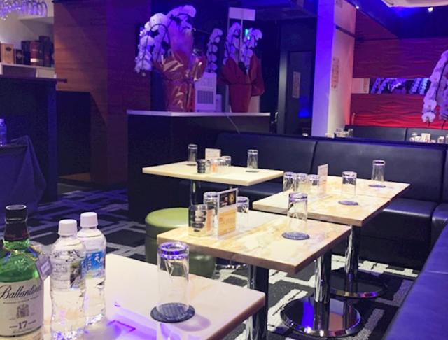 美姉ラウンジ 小鳥遊[たかなし](上野キャバクラ)のバイト求人・体験入店情報Photo5