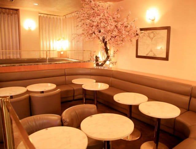 CLUB 櫻 SAKURA[サクラ](川越キャバクラ)のバイト求人・体験入店情報Photo2