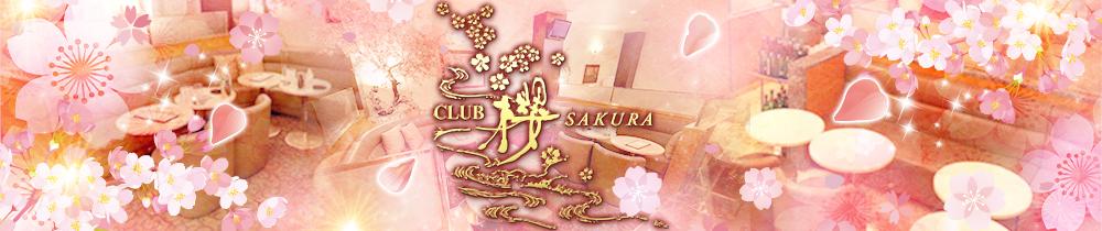CLUB 櫻 SAKURA[サクラ] 川越 キャバクラ TOP画像