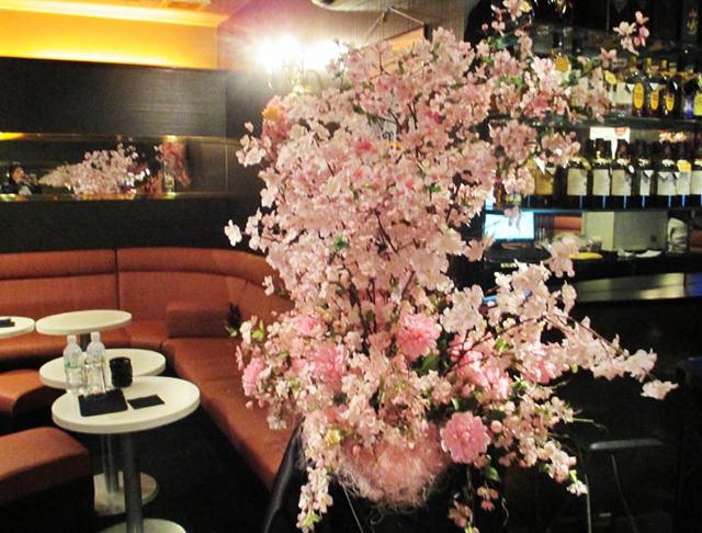 Lucia[ルチア](草加キャバクラ)のバイト求人・体験入店情報Photo3