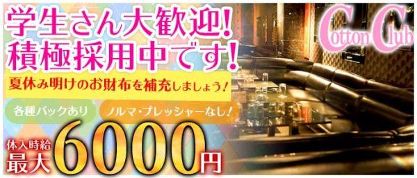 Cotton Club [コットンクラブ](上野キャバクラ)のバイト求人・体験入店情報