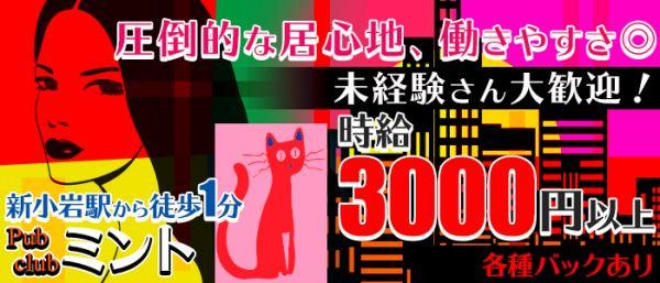 ミント(錦糸町キャバクラ)のバイト求人・体験入店情報