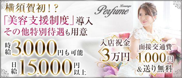 Perfume[パフューム](横須賀キャバクラ)のバイト求人・体験入店情報