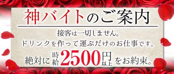 club N(銀座キャバクラ)のバイト求人・体験入店情報