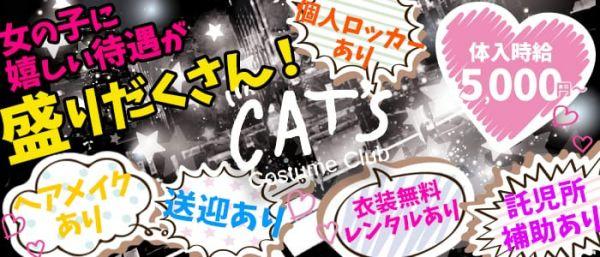Cat's [キャッツ](静岡キャバクラ)のバイト求人・体験入店情報