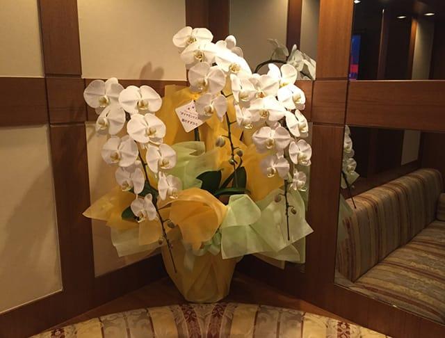 CLUB Ciel[シエル](歌舞伎町キャバクラ)のバイト求人・体験入店情報Photo5