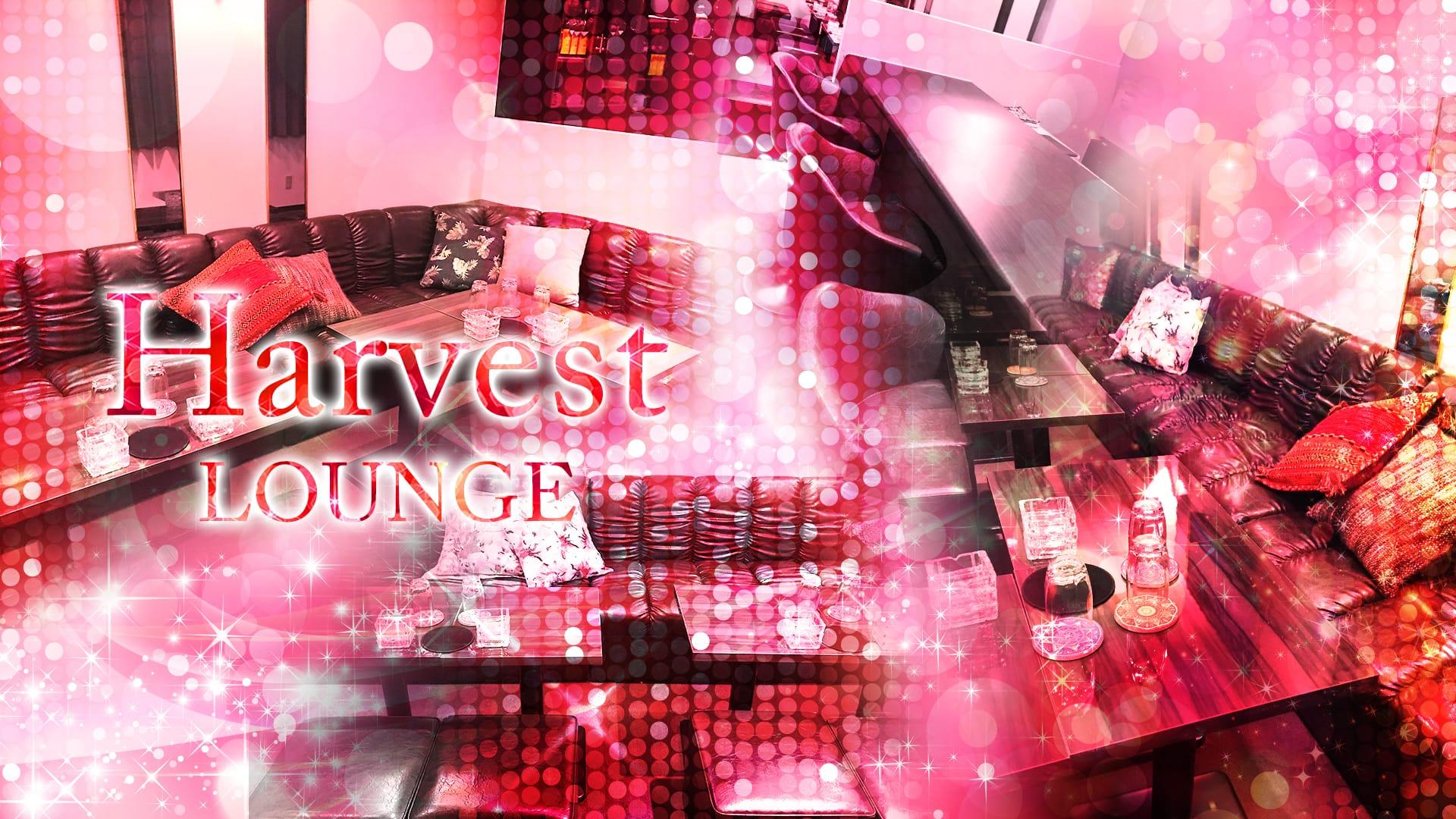 Lounge  Harvest [ラウンジ ハーヴェスト] 川越 キャバクラ TOP画像