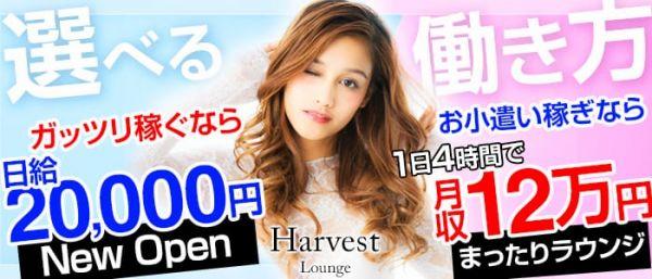 Lounge  Harvest [ラウンジ ハーヴェスト](川越キャバクラ)のバイト求人・体験入店情報