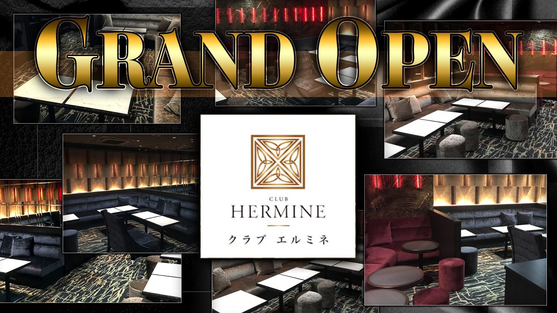 HERMINE 川崎~エルミネ~ 川崎 キャバクラ TOP画像