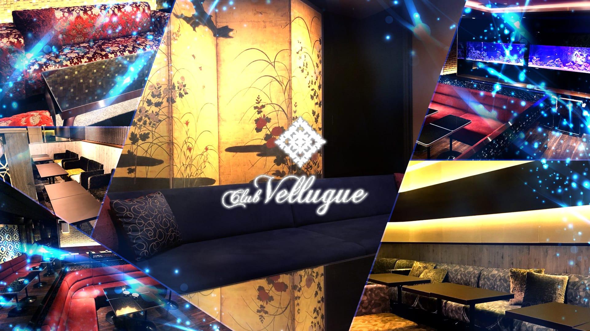 Vellugue(ヴェルージュ) 西船橋 キャバクラ TOP画像
