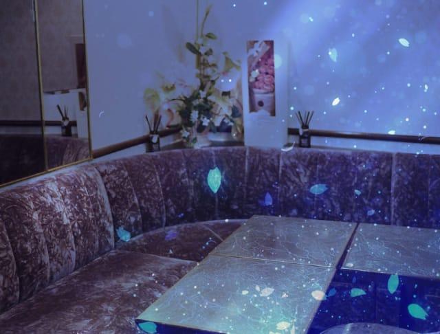 春[ハル](湯島キャバクラ)のバイト求人・体験入店情報Photo3