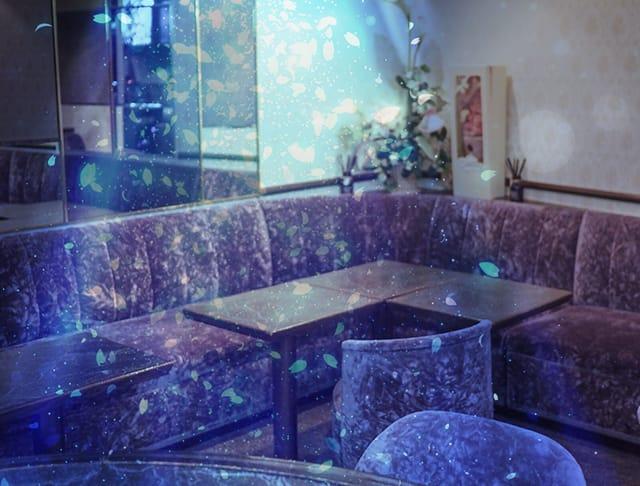 春[ハル](湯島キャバクラ)のバイト求人・体験入店情報Photo1