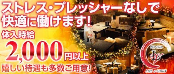 PUB LIKE A VIRGIN[パブ ライク ア ヴァージン](歌舞伎町キャバクラ)のバイト求人・体験入店情報