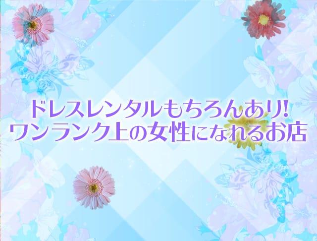 Club Sabrina[サブリナ](吉祥寺キャバクラ)のバイト求人・体験入店情報Photo3