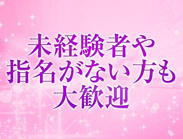 スナキャバ Dahlia[ダリア] 神田 キャバクラ SHOP GALLERY 3