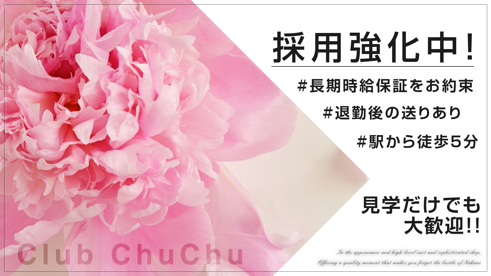 Club Chu Chu[クラブチュチュ] 中野 キャバクラ TOP画像