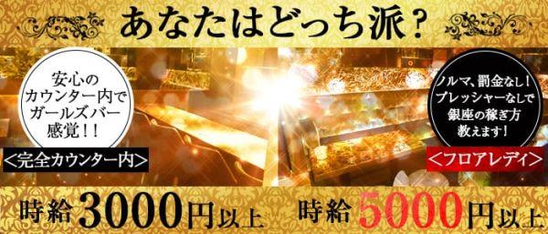 クラブ笹木(銀座キャバクラ)のバイト求人・体験入店情報