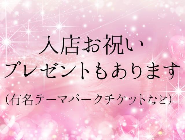 NewClubCinderella[ニュークラブシンデレラ] 千葉 キャバクラ SHOP GALLERY 4