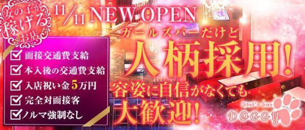 girl's bar DOGGY[ドギー](錦糸町キャバクラ)のバイト求人・体験入店情報