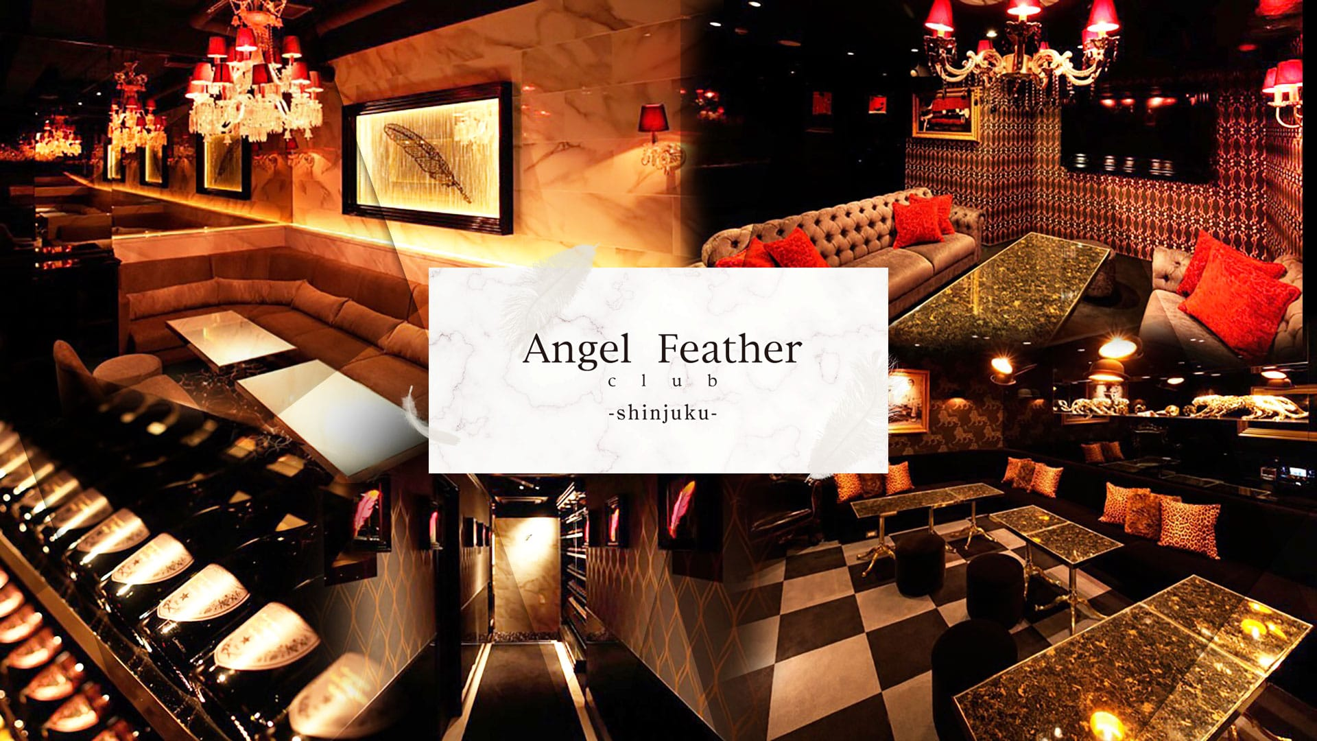 Angel Feather  新宿[エンジェルフェザーシンジュク] TOP画像
