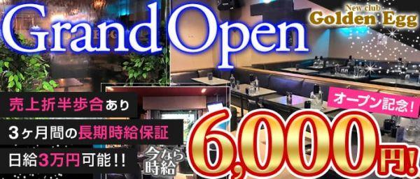 New club Golden Egg[ゴールデンエッグ](新所沢キャバクラ)のバイト求人・体験入店情報