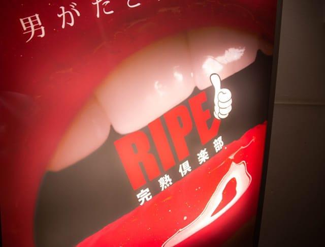 RIPE[ライプ](本厚木キャバクラ)のバイト求人・体験入店情報Photo5