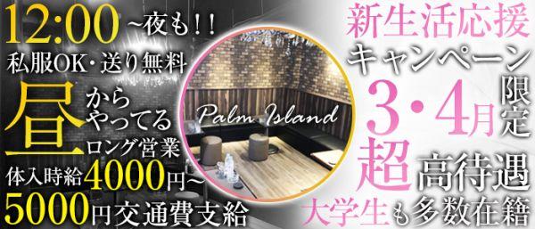 【 昼&夜 】パームアイランド(関内キャバクラ)のバイト求人・体験入店情報