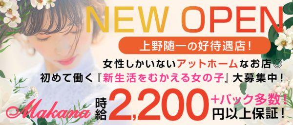 Makana[マカナ](上野キャバクラ)のバイト求人・体験入店情報