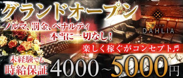 CLUB DAHLIA(ダリア)(上野キャバクラ)のバイト求人・体験入店情報