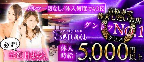 serina[セリナ](吉祥寺キャバクラ)のバイト求人・体験入店情報