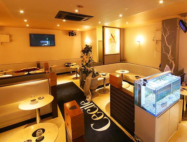 Club Cecil [クラブ セシル](川崎キャバクラ)のバイト求人・体験入店情報Photo1