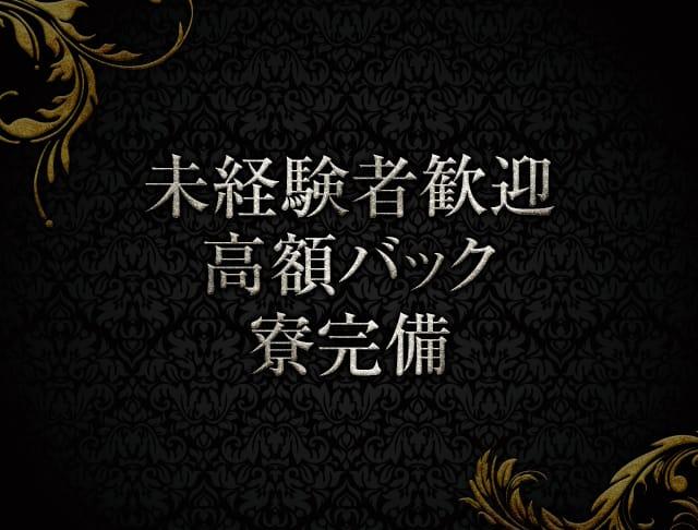 DEVOCION(ディヴォーション)【公式求人情報】 歌舞伎町 キャバクラ SHOP GALLERY 3