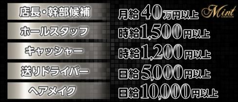 【上野】 LUXURY CLUB MINT(ミント)【公式求人情報】(上野)のボーイ・男性求人