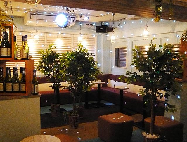 Lounge cork(コルク) 新橋キャバクラ SHOP GALLERY 1