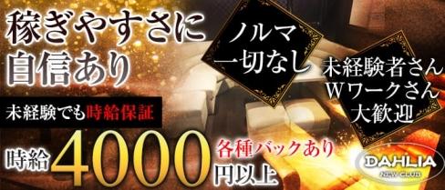 Club DAHLIA(ダリア)【公式求人情報】(葛西キャバクラ)の求人・バイト・体験入店情報
