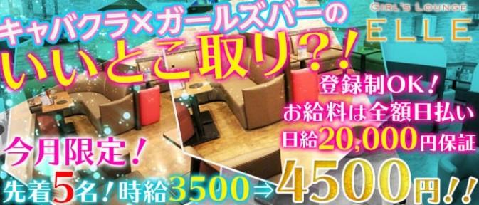 Girls Lounge ELLE~ガールズラウンジ エル~【公式求人情報】