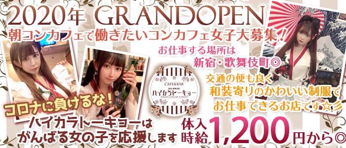 Cafe&Bar ハイカラトーキョー【公式求人情報】 バナー