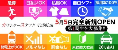 カウンタースナックFabbian~ファビアン~【公式求人情報】(上野スナック)の求人・バイト・体験入店情報