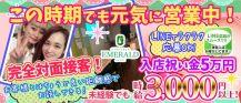 Girls Bar Emerald(ガールズバーエメラルド)【公式求人情報】 バナー
