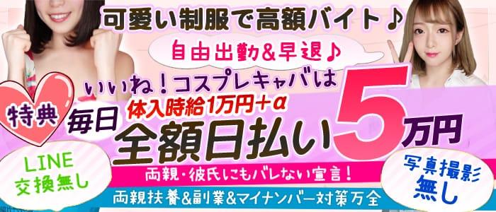 BIKINI(ビキニ)【公式求人情報】 バナー