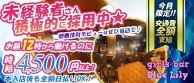 girls bar Blue-Lily(ブルーリリー)【公式求人情報】(歌舞伎町ガールズバー)の求人・バイト・体験入店情報