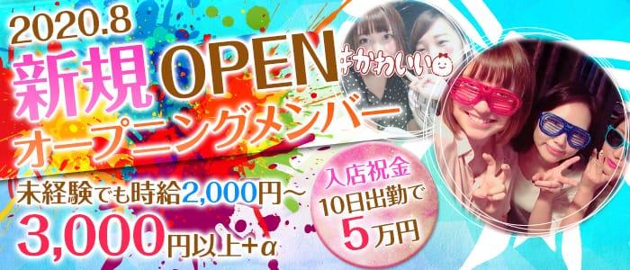 Girls Bar Ace(エース) 横浜ガールズバー バナー