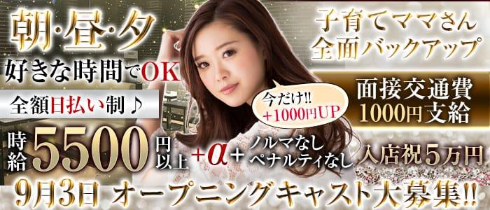 【朝】SHELTER 2(シェルター2) 歌舞伎町昼キャバ・朝キャバ バナー